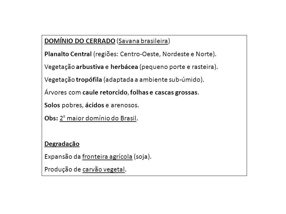 DOMÍNIO DO CERRADO (Savana brasileira)