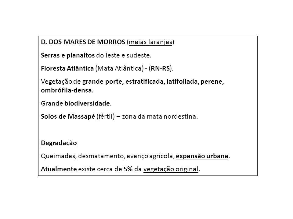 D. DOS MARES DE MORROS (meias laranjas)