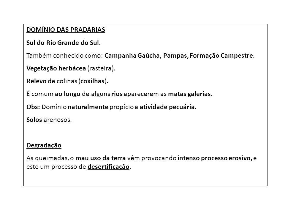 DOMÍNIO DAS PRADARIAS Sul do Rio Grande do Sul. Também conhecido como: Campanha Gaúcha, Pampas, Formação Campestre.