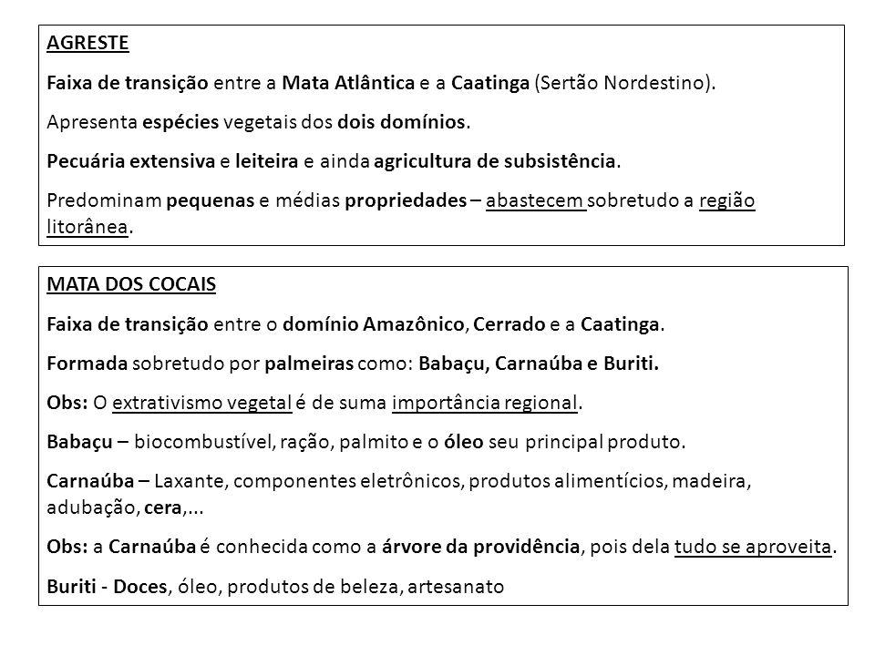 AGRESTE Faixa de transição entre a Mata Atlântica e a Caatinga (Sertão Nordestino). Apresenta espécies vegetais dos dois domínios.
