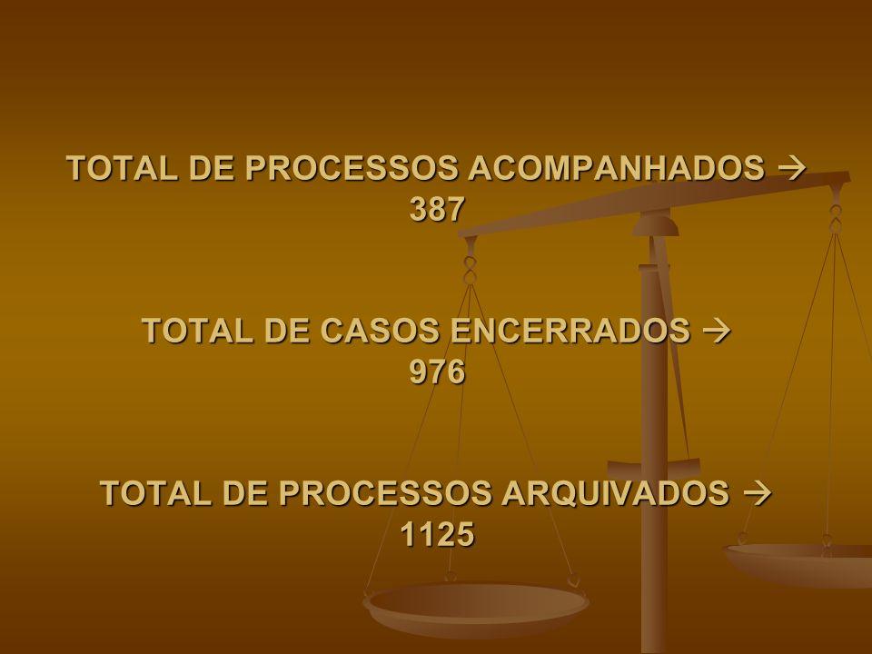 TOTAL DE PROCESSOS ACOMPANHADOS  387 TOTAL DE CASOS ENCERRADOS  976 TOTAL DE PROCESSOS ARQUIVADOS  1125