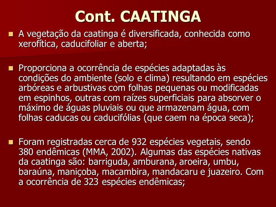 Cont. CAATINGA A vegetação da caatinga é diversificada, conhecida como xerofítica, caducifoliar e aberta;