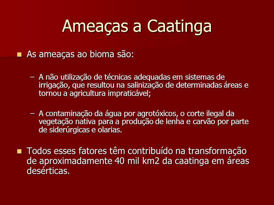 Ameaças a Caatinga As ameaças ao bioma são: