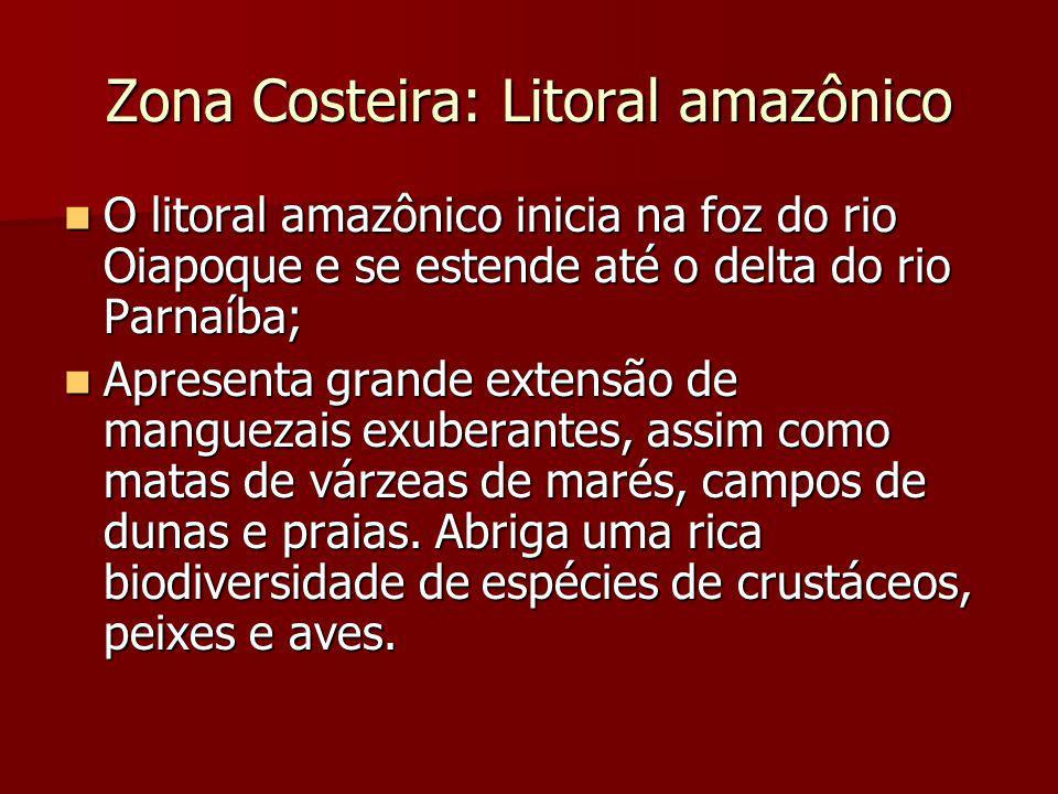Zona Costeira: Litoral amazônico