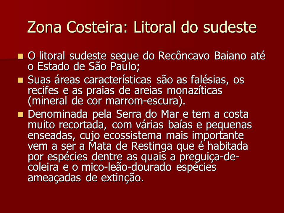 Zona Costeira: Litoral do sudeste