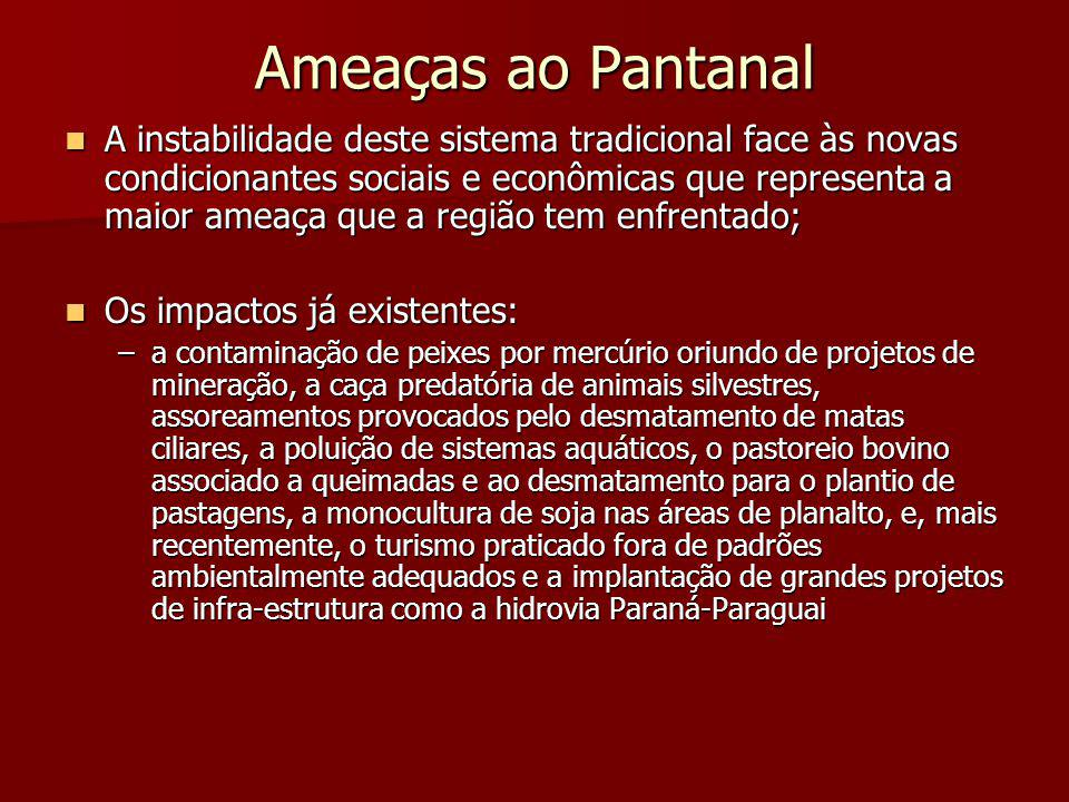 Ameaças ao Pantanal