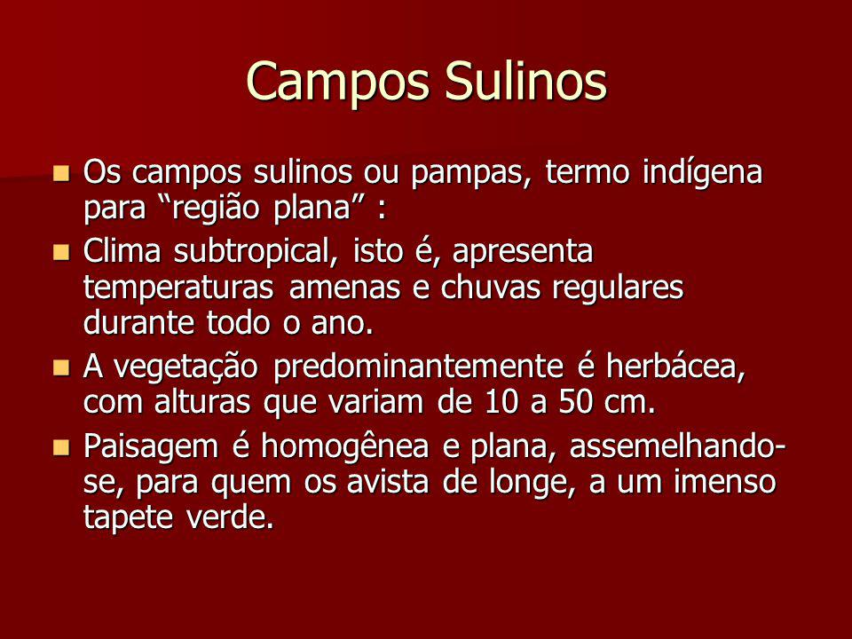 Campos Sulinos Os campos sulinos ou pampas, termo indígena para região plana :