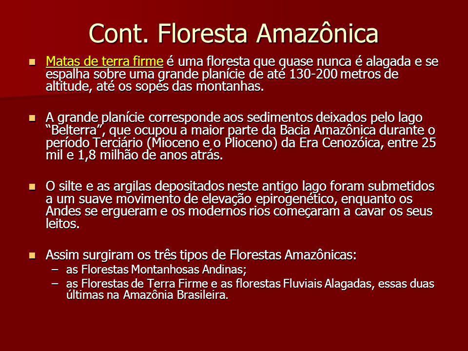 Cont. Floresta Amazônica