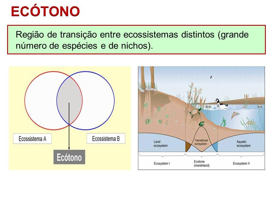 ECÓTONO Região de transição entre ecossistemas distintos (grande