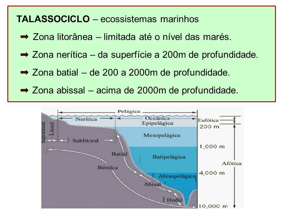 TALASSOCICLO – ecossistemas marinhos