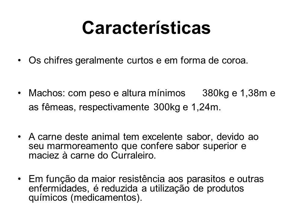 Características Os chifres geralmente curtos e em forma de coroa.