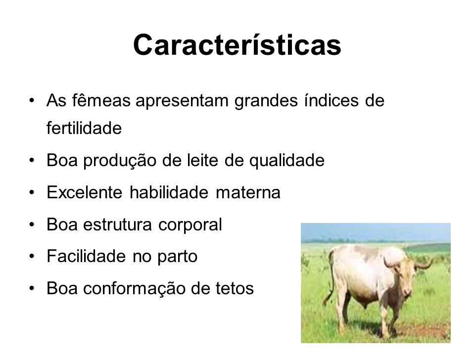 Características As fêmeas apresentam grandes índices de fertilidade