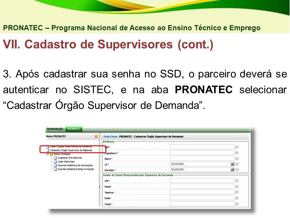 VII. Cadastro de Supervisores (cont.)