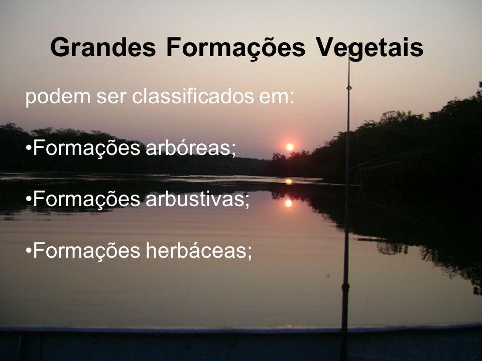 Grandes Formações Vegetais