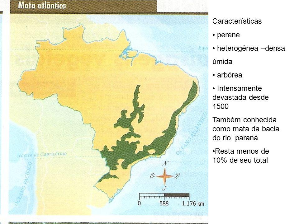 Características perene. heterogênea –densa. úmida. arbórea. Intensamente devastada desde 1500.
