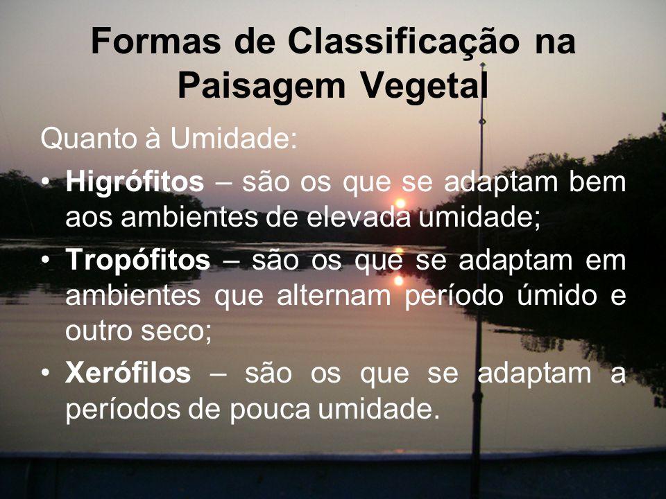 Formas de Classificação na Paisagem Vegetal