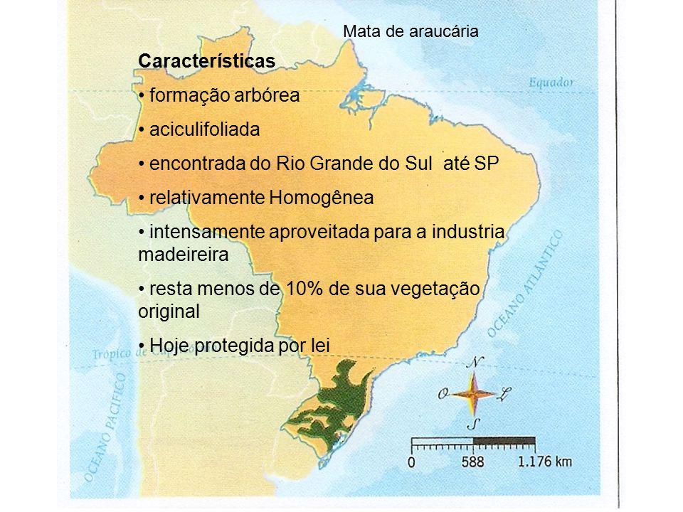 encontrada do Rio Grande do Sul até SP relativamente Homogênea