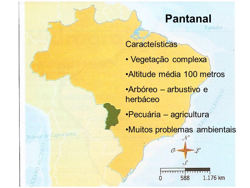 Pantanal Caracteísticas Vegetação complexa Altitude média 100 metros
