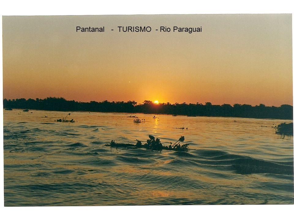 Pantanal - TURISMO - Rio Paraguai