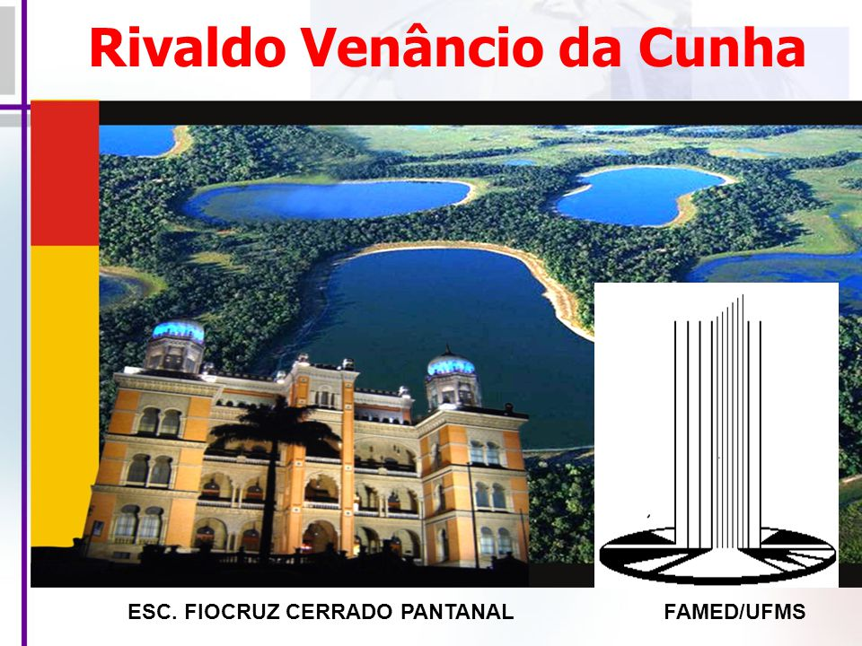 Rivaldo Venâncio da Cunha