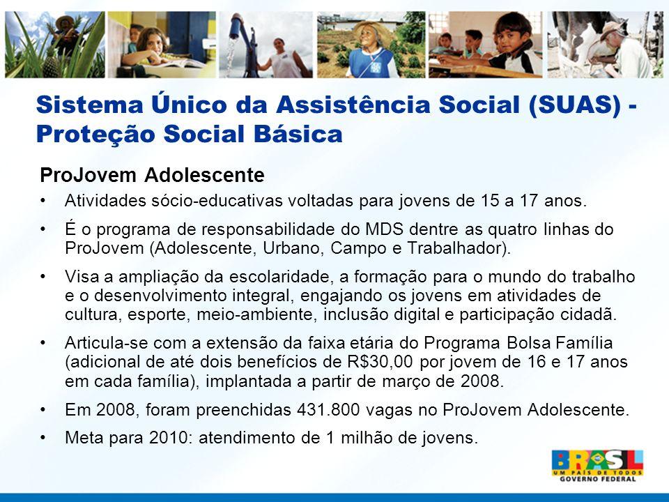 Sistema Único da Assistência Social (SUAS) - Proteção Social Básica