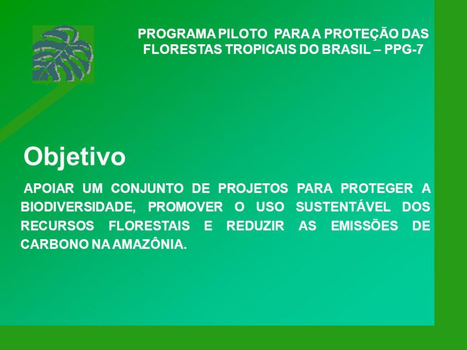 PROGRAMA PILOTO PARA A PROTEÇÃO DAS FLORESTAS TROPICAIS DO BRASIL – PPG-7