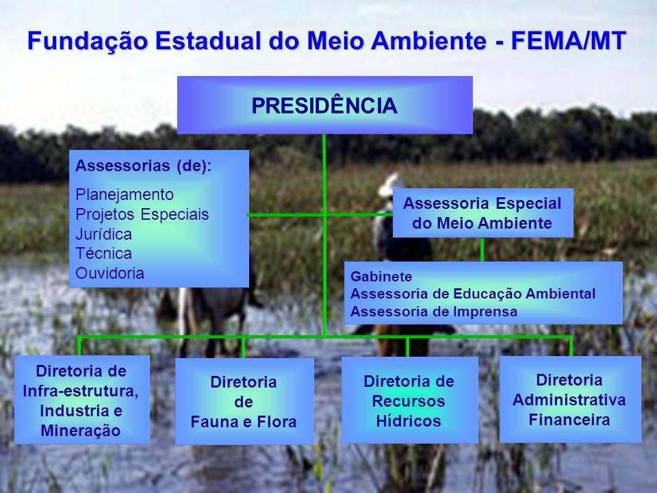 Fundação Estadual do Meio Ambiente - FEMA/MT