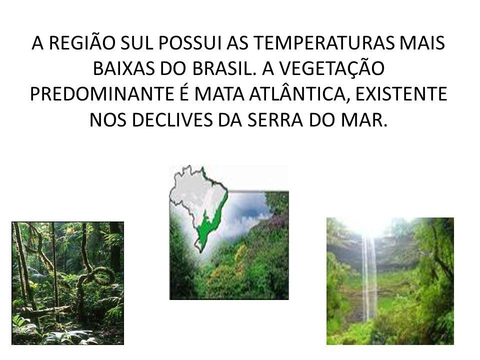 A REGIÃO SUL POSSUI AS TEMPERATURAS MAIS BAIXAS DO BRASIL