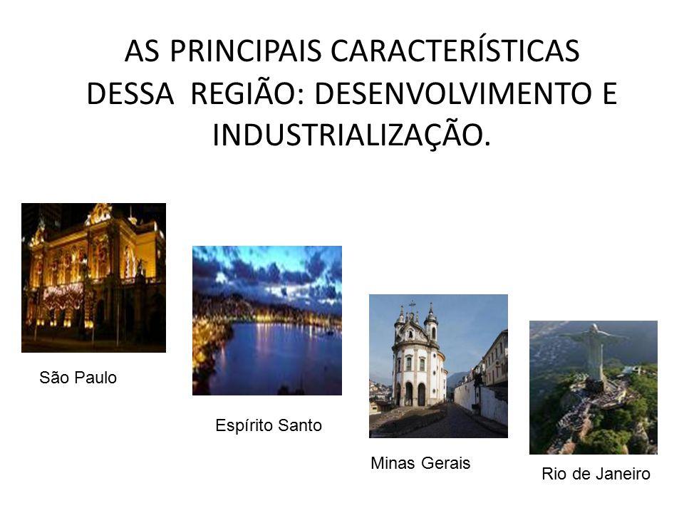 AS PRINCIPAIS CARACTERÍSTICAS DESSA REGIÃO: DESENVOLVIMENTO E INDUSTRIALIZAÇÃO.