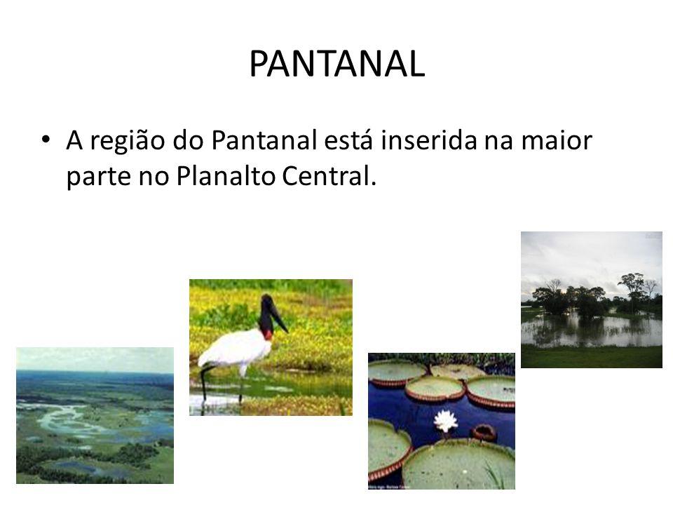 PANTANAL A região do Pantanal está inserida na maior parte no Planalto Central.