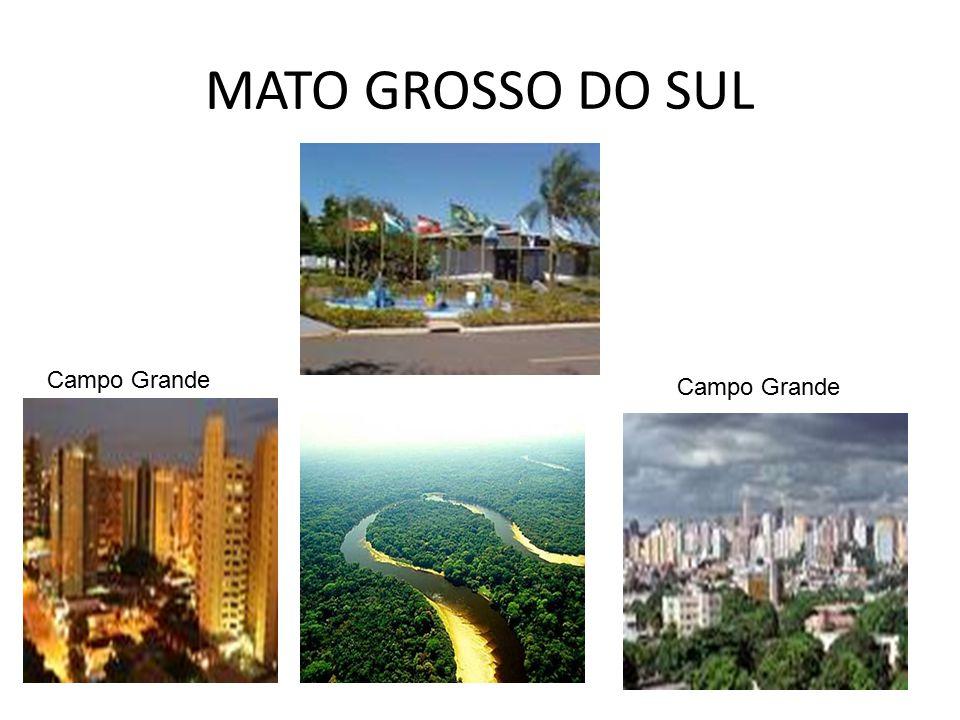 MATO GROSSO DO SUL Campo Grande Campo Grande