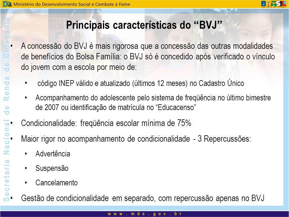 Principais características do BVJ