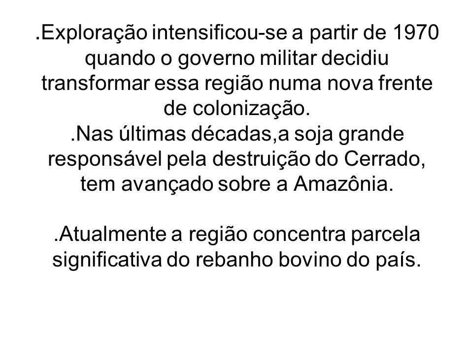 .Exploração intensificou-se a partir de 1970 quando o governo militar decidiu transformar essa região numa nova frente de colonização.