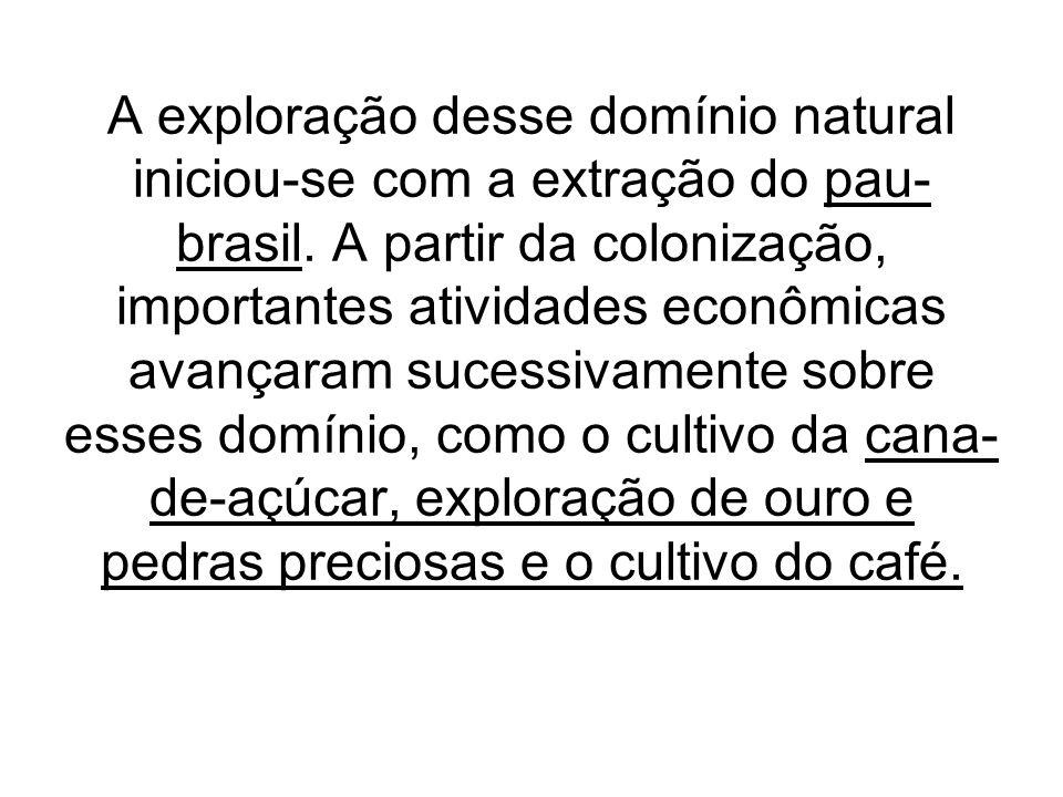 A exploração desse domínio natural iniciou-se com a extração do pau-brasil.