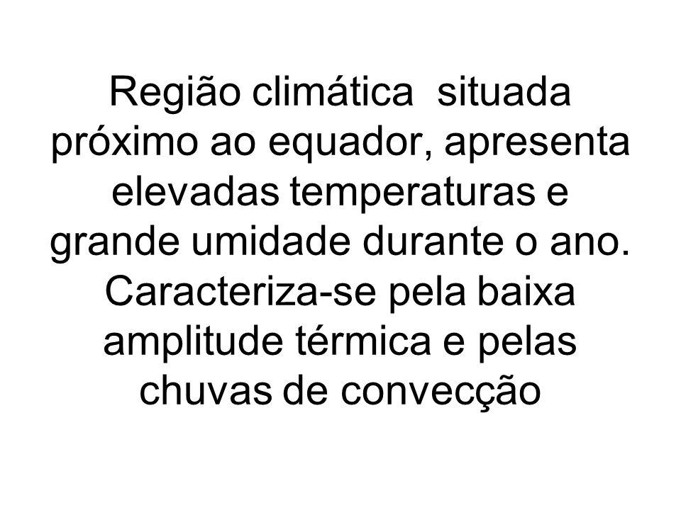 Região climática situada próximo ao equador, apresenta elevadas temperaturas e grande umidade durante o ano.