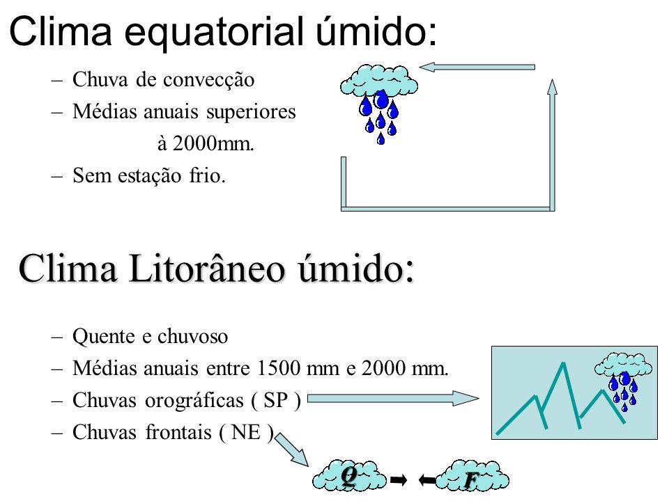 Clima equatorial úmido: