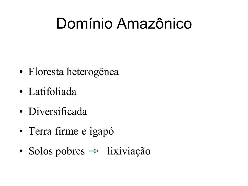 Domínio Amazônico Floresta heterogênea Latifoliada Diversificada