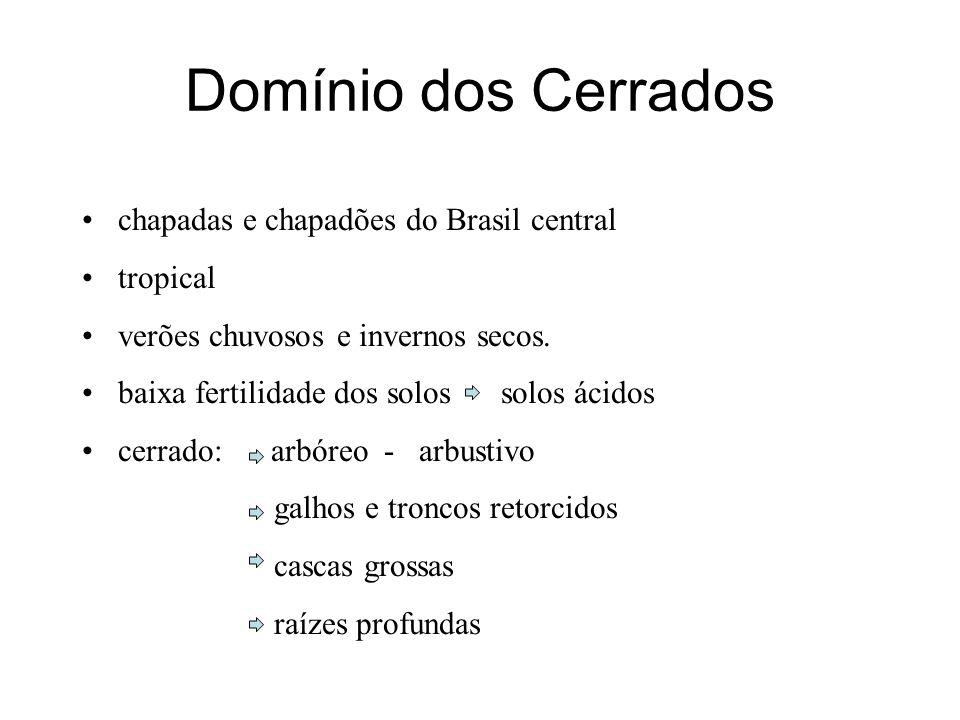 Domínio dos Cerrados chapadas e chapadões do Brasil central tropical