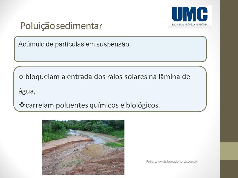 Foto: www.tribunadonorte.com.br