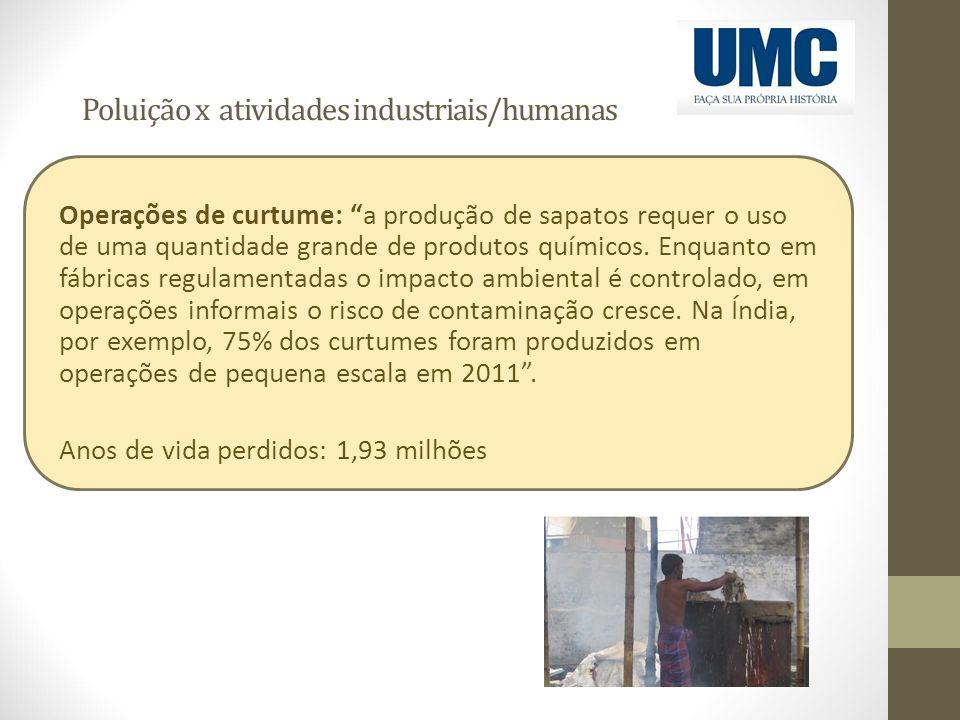 Poluição x atividades industriais/humanas