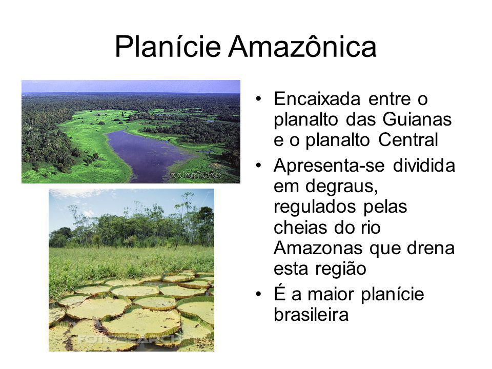 Planície Amazônica Encaixada entre o planalto das Guianas e o planalto Central.