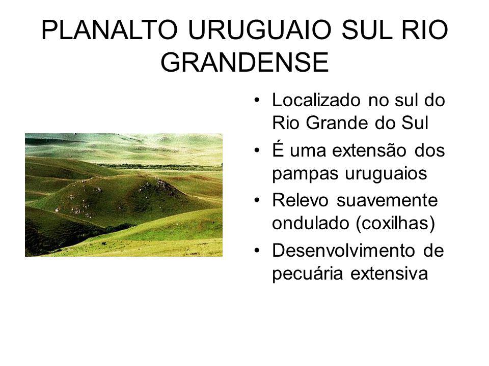 PLANALTO URUGUAIO SUL RIO GRANDENSE