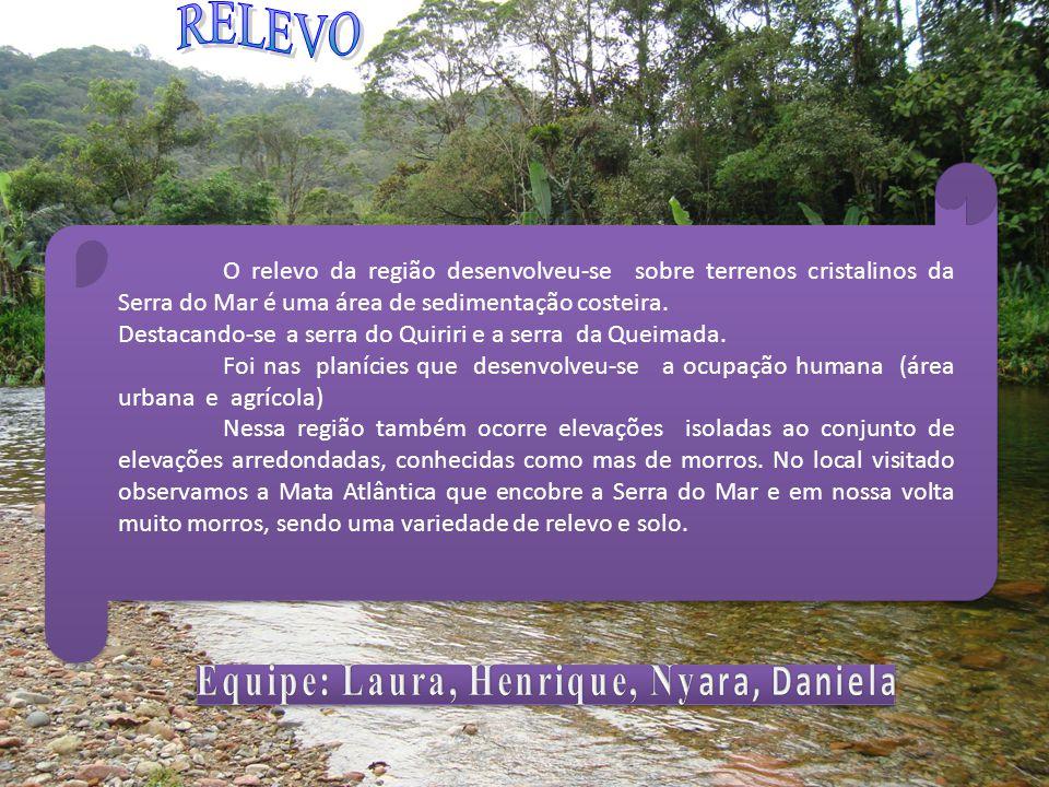 Equipe: Laura, Henrique, Nyara, Daniela