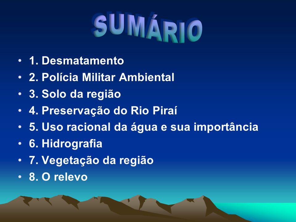 1. Desmatamento 2. Polícia Militar Ambiental. 3. Solo da região. 4. Preservação do Rio Piraí. 5. Uso racional da água e sua importância.