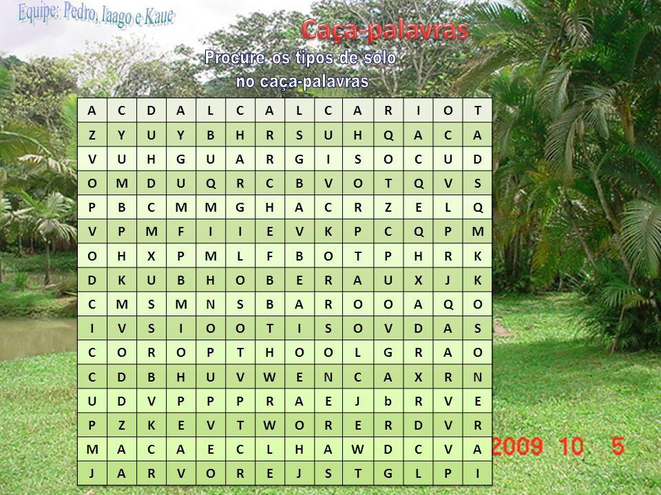 Caça-palavras Procure os tipos de solo no caça-palavras A C D L R I O