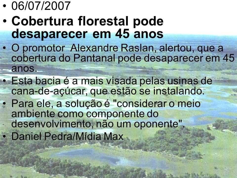 Cobertura florestal pode desaparecer em 45 anos