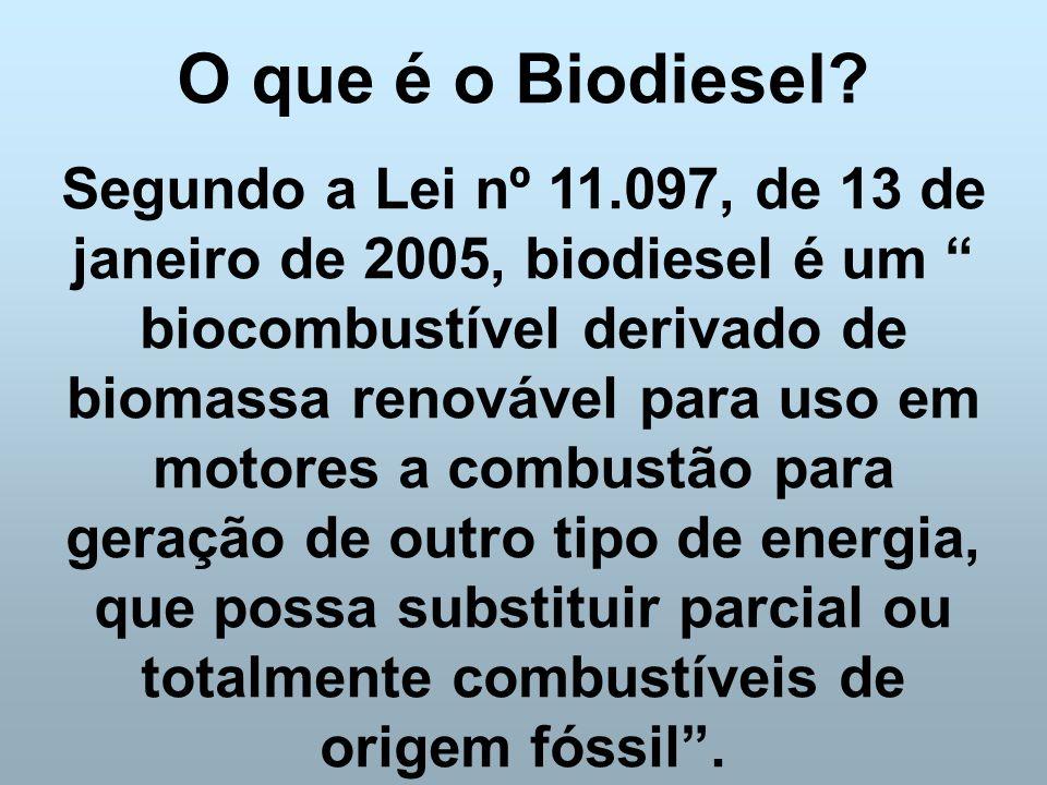 O que é o Biodiesel
