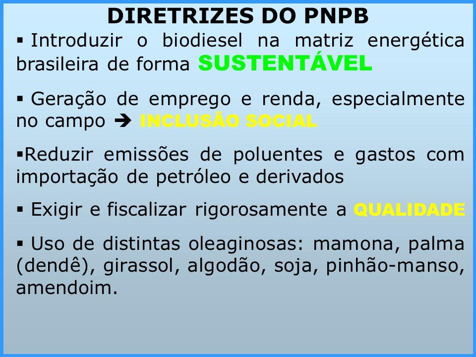 DIRETRIZES DO PNPB Introduzir o biodiesel na matriz energética brasileira de forma SUSTENTÁVEL.