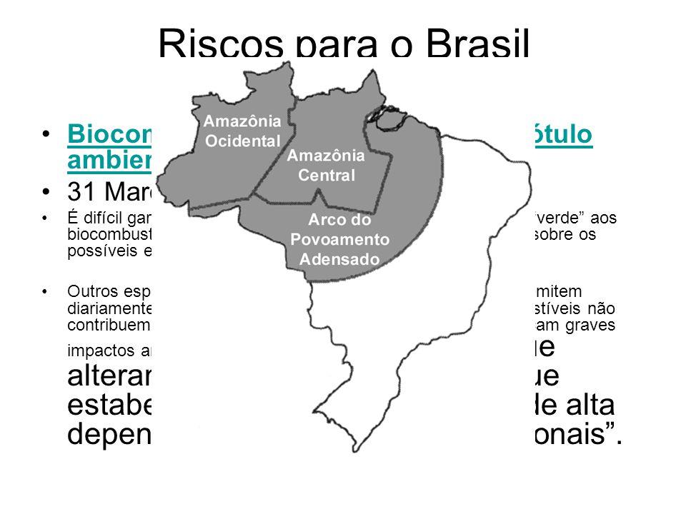 Riscos para o Brasil Biocombustíveis estão perdendo o rótulo ambiental, diz 'El País' 31 Março , 2008.
