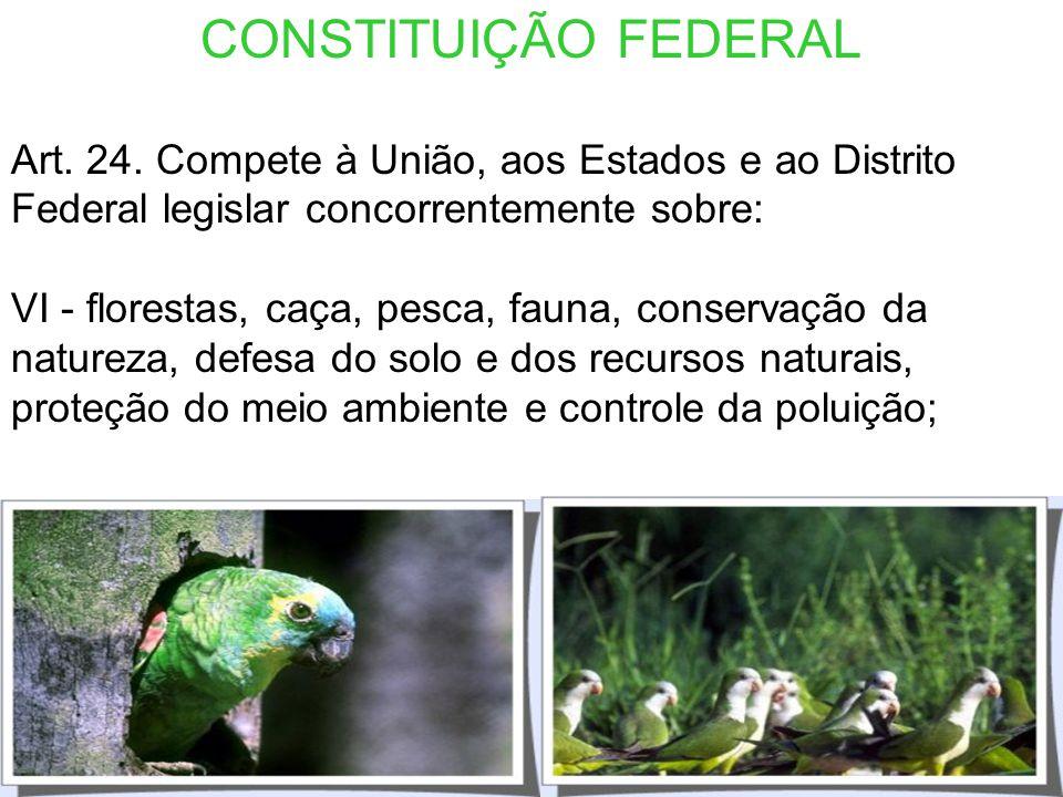 CONSTITUIÇÃO FEDERAL Art. 24. Compete à União, aos Estados e ao Distrito Federal legislar concorrentemente sobre: